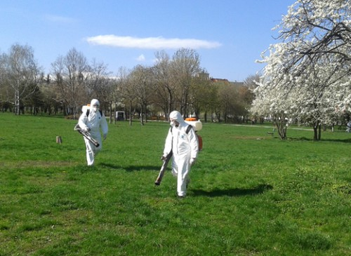 Дезакаризация на тревни площи