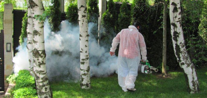 Обработки против комари и кърлежи - Юни
